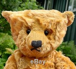 Elder 18 Inch Mohair Bear by Terry John Woods from 1993 with Original Tag