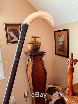 Scarce As Boar's Tusks, Fabulous Cane From Late 1700's/Early 1800's, Massive